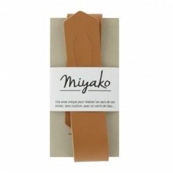 Anse de sac Miyako Camel